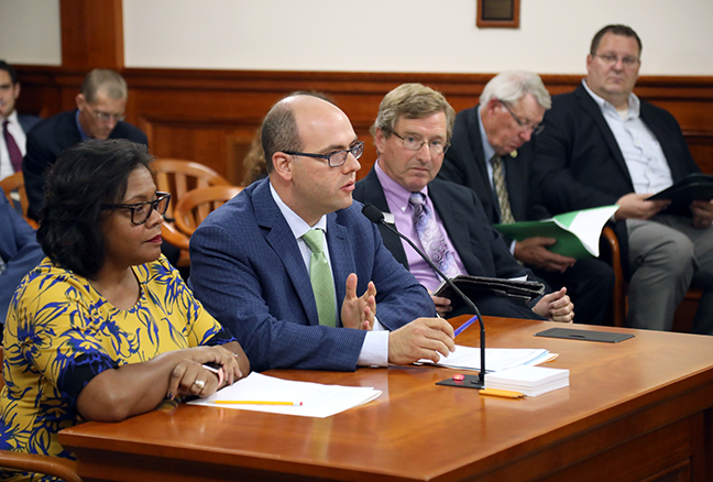 State Rep. John Cherry (D-Flint) testifies in the House Natural Resources Committee on Tuesday, Sept. 3, 2019.