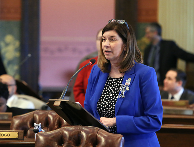 State Rep. Cara Clemente (D-Lincoln Park) recognized Michigan Rare Disease Day on Thursday, March 8, 2019.