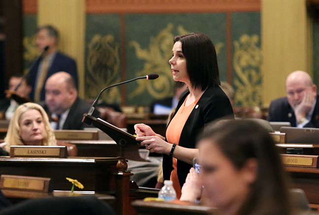 State Rep. Laurie Pohutsky (D-Livonia) speaks in response to legislative Republicans overturning Gov. Whitmer's executive order, allowing decision-making bodies within the DEQ to continue to be operated by industry, manufacturing and business interests, on Wednesday, February 6, 2019.