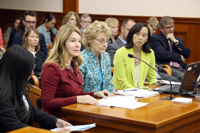 State Rep. Donna Lasinski (D-Scio Township) testifies on House Resolution 105 before the House Law and Justice Committee on Tuesday, May 30, 2017. Accompanied by a bipartisan bill package, the resolution supports the United Nations' efforts to eliminate female genital mutilation worldwide, and urges the state of Michigan to do everything it can to end FGM in the state. Joining her are state Reps. Vanessa Guerra (D-Saginaw), Pam Faris (D-Clio) and Stephanie Chang (D-Detroit).