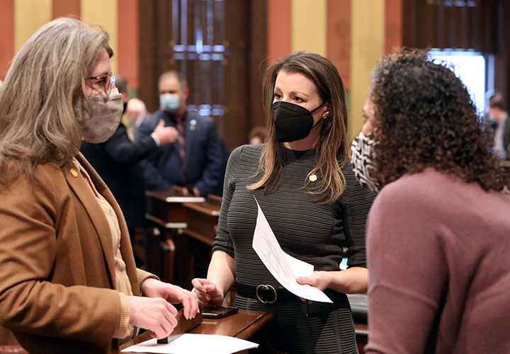 State Rep. Samantha Steckloff (D-Farmington Hills) discusses legislation on the House floor March 10, 2021.
