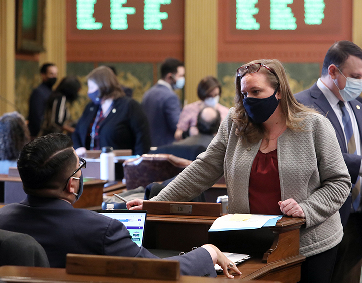 State Representative Kelly Breen (D-Novi) discusses legislation on the House floor February 10, 2021.