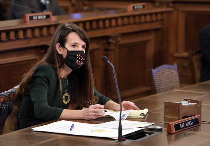 State Representative Christine Morse (D-Portage) in committee on February 11, 2021.