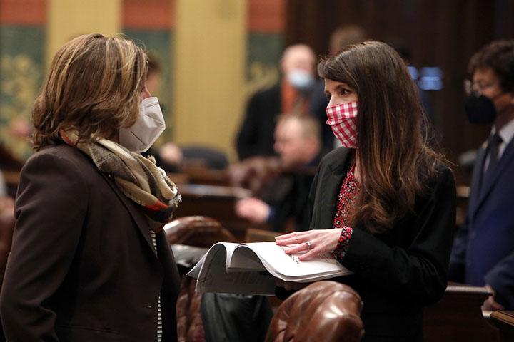State Representative Christine Morse (D-Portage) discussing legislation on the House floor January 26, 2021.