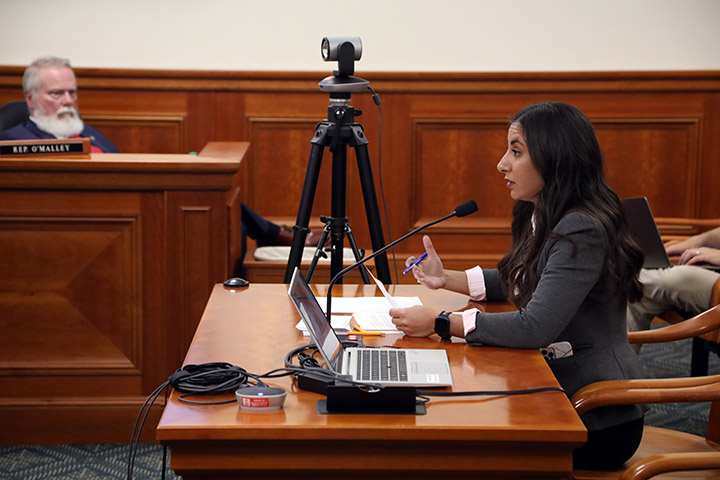 State Rep. Mari Manoogian (D-Birmingham) testified on House Bill 4951 in the House Committee on Financial Services on June 9, 2021.